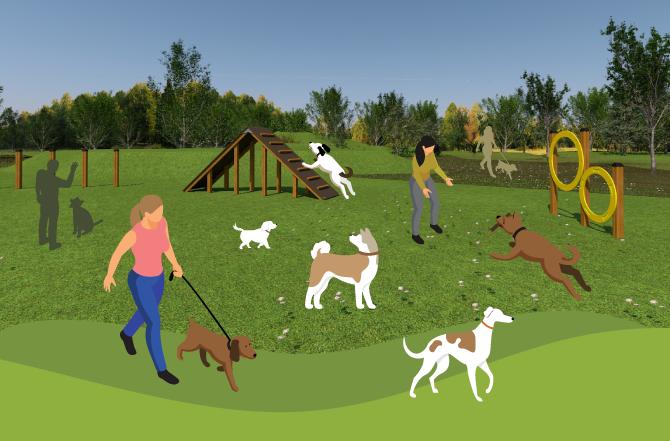 Dog agility by Lars Laj